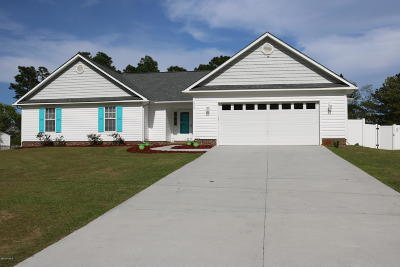 Carteret County Single Family Home For Sale: 329 Star Hill Drive