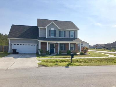 Sterling Farms Single Family Home For Sale: 266 Silver Hills Drive
