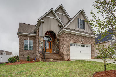 Nashville Single Family Home For Sale: 867 Live Oak Lane