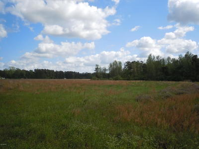 Tabor City Residential Lots & Land For Sale: 2945 Will Inman Road