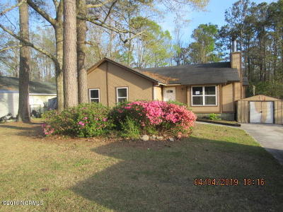 Onslow County Single Family Home For Sale: 811 Mill River Road