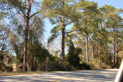 Brunswick County Commercial For Sale: 1933 Holden Beach Road SW