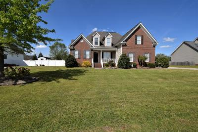 Winterville Single Family Home For Sale: 361 Windmill Drive