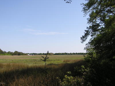 Southport Residential Lots & Land For Sale: 646 Spartina Court