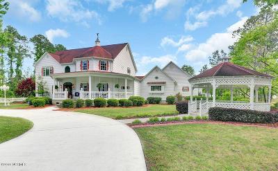 Castle Hayne Single Family Home For Sale: 6419 Orange Street