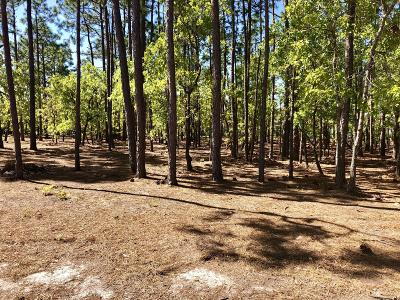 Brunswick County Residential Lots & Land For Sale: 2752 Park Ridge Drive