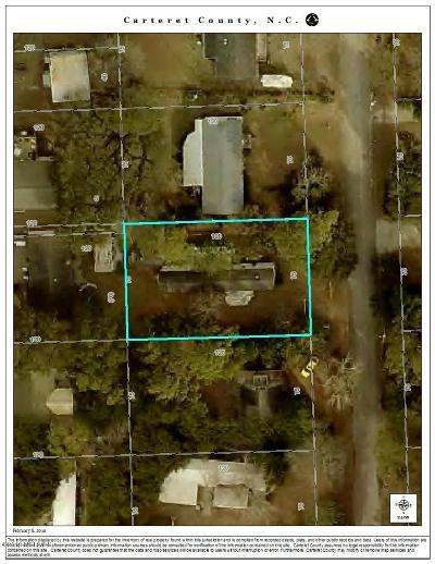 Atlantic Beach Manufactured Home For Sale: 219 Dogwood Street