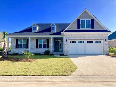 Leland Single Family Home For Sale: 1225 Waterfall Way