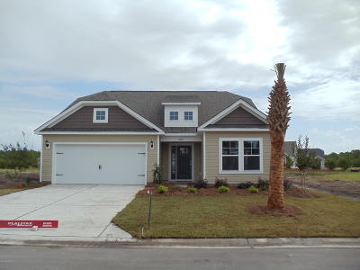 Brunswick County, New Hanover County, Georgetown County, Horry County Single Family Home For Sale: 900 Teaticket Lane SW