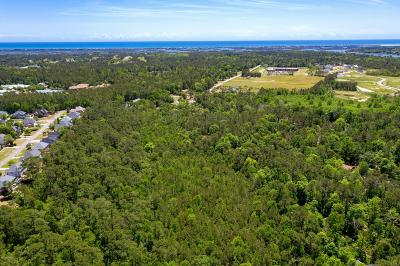 New Hanover County Commercial For Sale: 817 Porters Neck Road