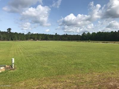 Residential Lots & Land For Sale: 66 Duff Field Drive