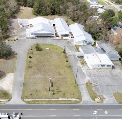 Brunswick County Commercial For Sale: 8249 River Road SE