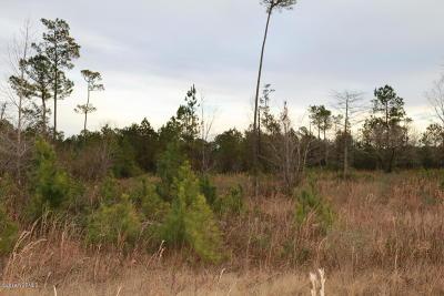 Jacksonville Residential Lots & Land For Sale: 108 Cole Porter Lane