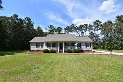 New Bern Single Family Home For Sale: 117 Blue Heron Drive
