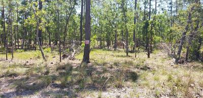 Boiling Spring Lakes Residential Lots & Land For Sale: 920 Cardinal Road