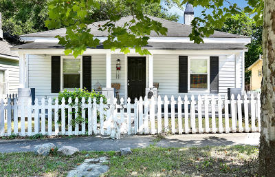 Wilmington Single Family Home For Sale: 313 Meares Street