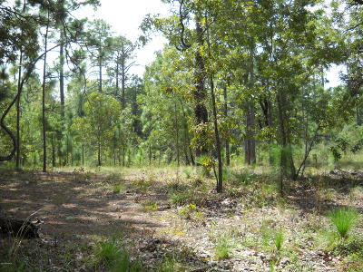 Boiling Spring Lakes Residential Lots & Land For Sale: 72 Greensboro Road