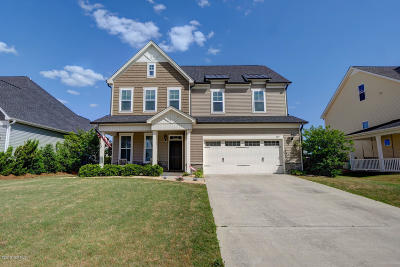 Single Family Home For Sale: 204 Willow Ridge Drive