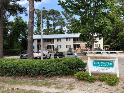 New Hanover County Commercial For Sale: 107 Lullwater Drive