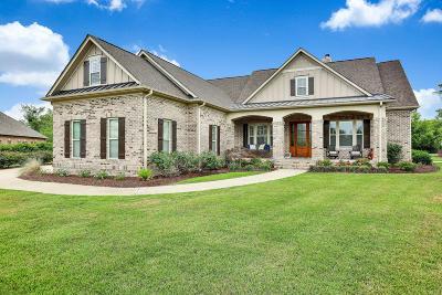 28451 Single Family Home For Sale: 2455 Coveside Court NE