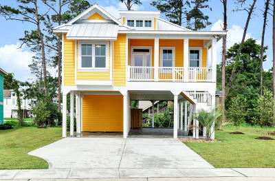 28465 Single Family Home For Sale: 102 Lucas Cove Way