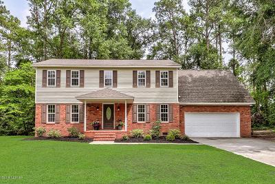 Castle Hayne Single Family Home For Sale: 3924 Hawks Nest Drive