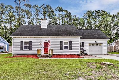 Kings Grant Single Family Home For Sale: 804 Cheryl Lane