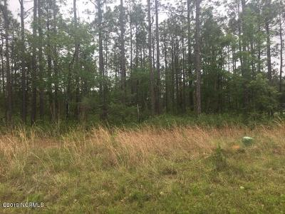 Southport Residential Lots & Land For Sale: 130 Fifty Lakes Drive
