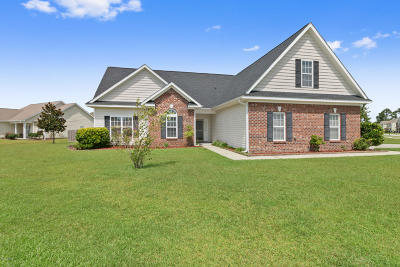 Sterling Farms Single Family Home For Sale: 127 Moonstone Court