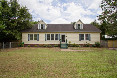 New Hanover County Single Family Home For Sale: 113 Horn Road