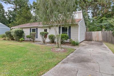 Jacksonville Single Family Home For Sale: 705 Terrace Court