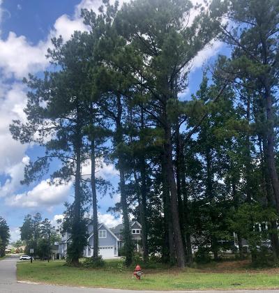 Castle Hayne Residential Lots & Land For Sale: 401 Cornubia Drive