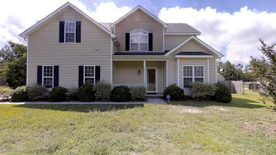Jacksonville Single Family Home For Sale: 228 Brookstone Way