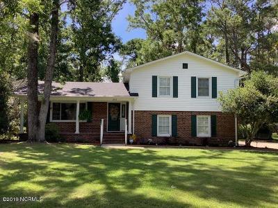 Wilmington Single Family Home For Sale: 313 W Blackbeard Road