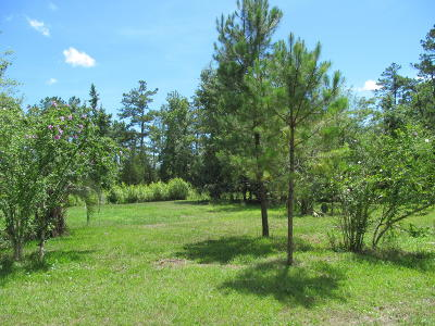 Beaufort Residential Lots & Land For Sale: 193 Wackena Way