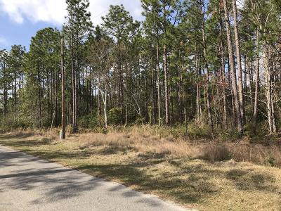 Boiling Spring Lakes Residential Lots & Land For Sale: 23 Ash Road