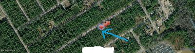 Boiling Spring Lakes Residential Lots & Land For Sale: L-12 Pee Dee Road