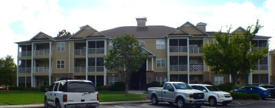 Crow Creek Condo/Townhouse For Sale: 290 Woodlands Way #2