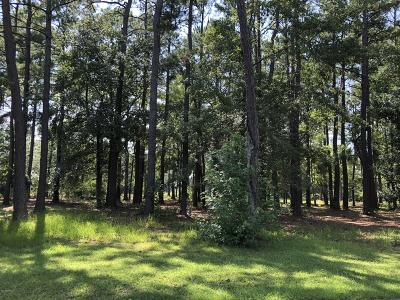 Ocean Isle Beach Residential Lots & Land For Sale: 487 Paxton Notch SW