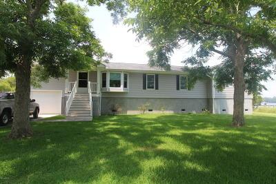 Single Family Home For Sale: 133 Palmetto Drive