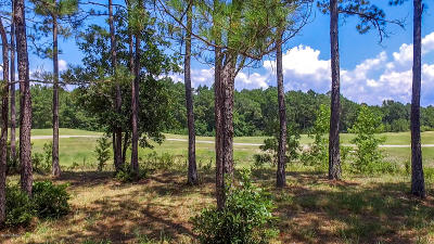 Ocean Isle Beach Residential Lots & Land For Sale: 548 Royalty Court