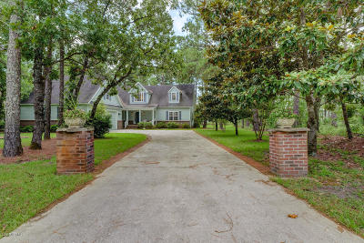 Hampstead Single Family Home For Sale: 428 Royal Tern Drive