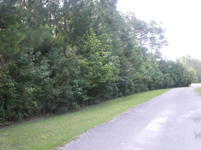 Tabor City Residential Lots & Land For Sale: 205 A J Lane