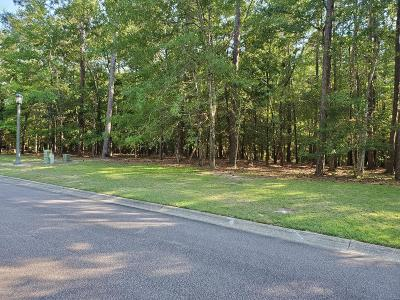 Shallotte Residential Lots & Land For Sale: 2114 Arnold Palmer Drive