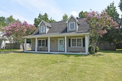 Castle Hayne Single Family Home For Sale: 211 Fairford Road