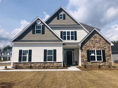 Sneads Ferry Single Family Home For Sale: 878 Stormy Gale Lane