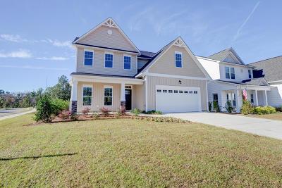 Hampstead Single Family Home For Sale: 11 Violetear Ridge #Lot #58