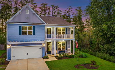 Brunswick County Single Family Home For Sale: 10230 Hawkeswater Boulevard