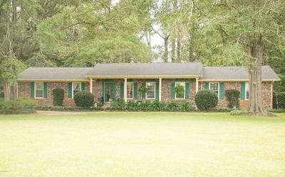 Castle Hayne Single Family Home For Sale: 205 Hermitage Road