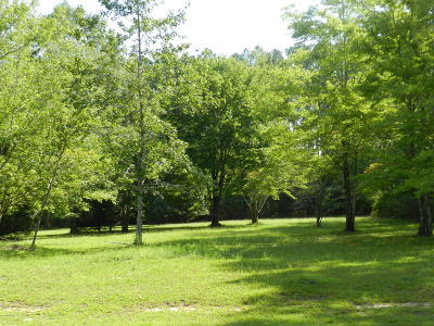 Havelock Residential Lots & Land For Sale: 303 Augusta Court